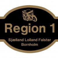 Region 1 Opstartsmøde